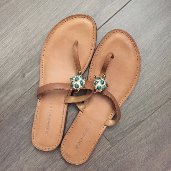 0657546c39b1 ANTONIO MELANI Shoes - Antonio Melani Turtle Sandals! 🐢